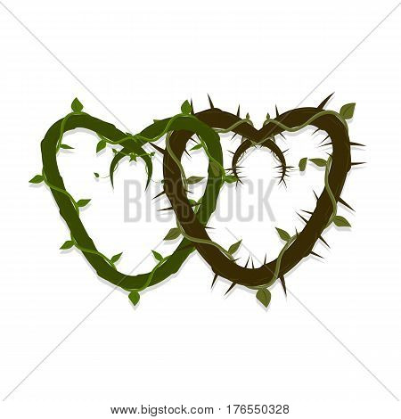 vector two intertwined hearts of vines and thorns.