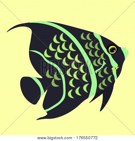 angelfish the fish a black vector illustration