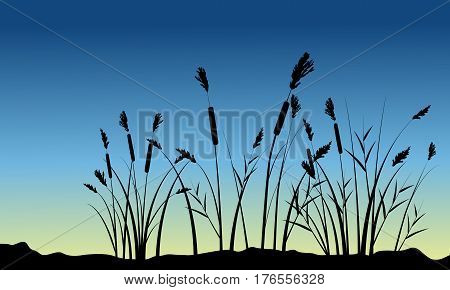 Coarse grass on hill scenery silhouettes vector art