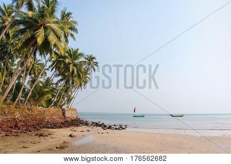 Tropical beach with palm trees India Goa. Blue sky and blue sea