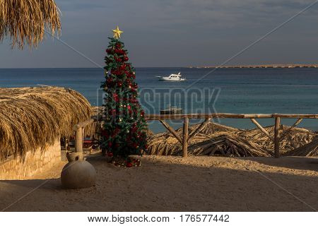 Dreamlike beauty of a tropical island are perfect for celebrating the Christmas and New Year.