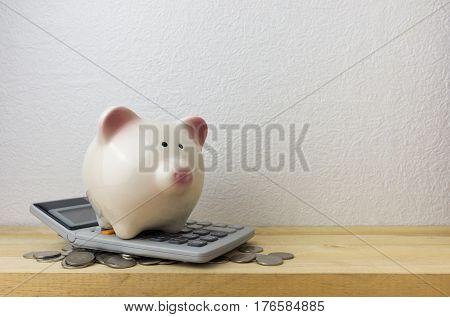Piggybank and money for money concept, closeup