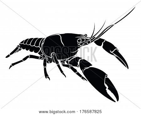 Lobster crayfish cancer icon. Vector illustration. Logo graphics.