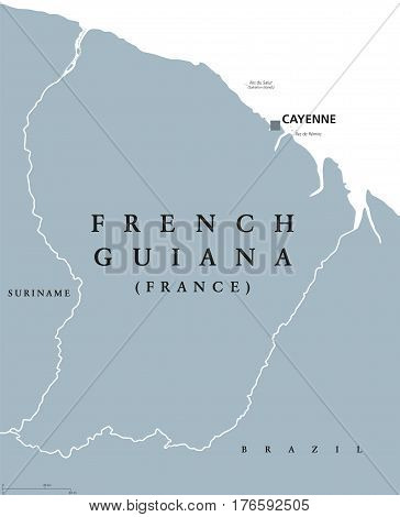 French Guiana political map with capital Cayenne and borders. Overseas department and region of France, located in South America. Gray illustration on white background. English labeling. Vector.