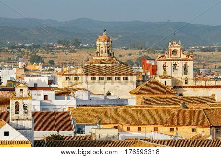 A view from the air to the city and the tiled roofs of houses from the Alcazar. Andalusia. Spain. Cordoba.