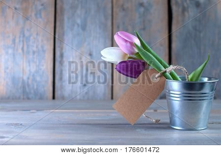 Spring tulips in a pot wooden background with space