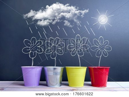 Chalkboard sketch of spring daisies inside flower pots with sun clouds and rain weather