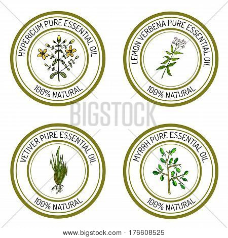 Set of essential oil labels hypericum, lemon verbena, myrrh, vetiver. Vector illustration