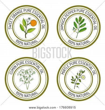 Set of essential oil labels sweet orange, jamaica pepper, cumun, mirtle. Vector illustration