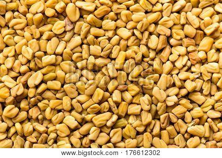 Fenugreek seeds background, spice culinary ingredient macro