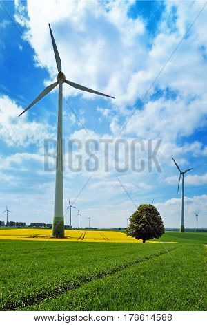 Wind turbines among rapeseed field and green meadows against a cloudy blue sky
