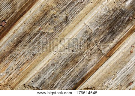 A fragment of a fence made of weathered rough unpainted wooden boards