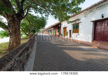 Tree Lined Street In Mompox