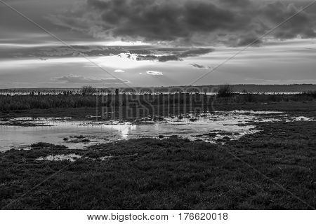 A Puget Sound sunset in reflected on a small pond. Black and white image.