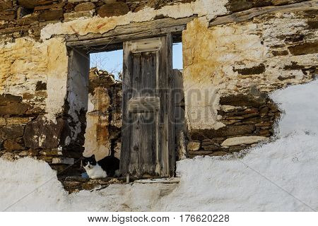 Cat in a window of an old abandoned ruined house in Ios, Greece.