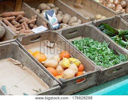 Vegetables like potato carrot salad and onion and pumkin in boxes made of wood