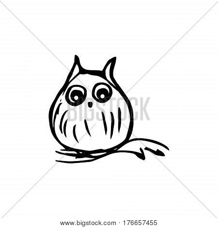 Little owl sitting on a branch. Owl with big eyes graphic drawing vector