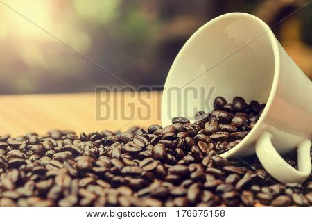 coffee cup and coffee beans for morning sunshine