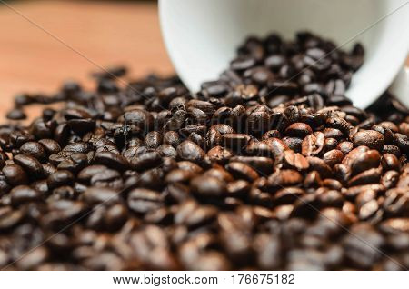 Coffee. Coffee cup full of coffee beans. Toned image.