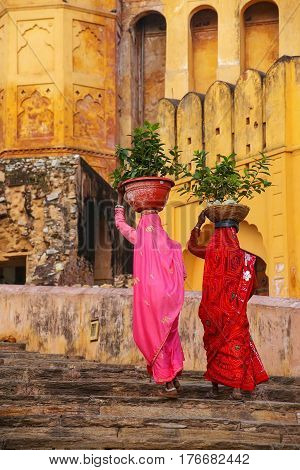 Local women carrying pots with plants on their heads at Amber Fort Rajasthan India. Amber Fort is the main tourist attraction in the Jaipur area.