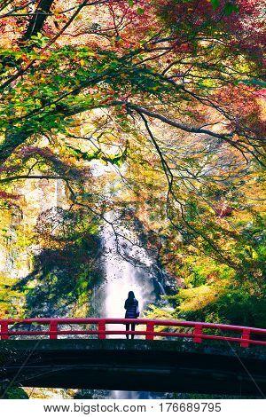 Minoh waterfall in autumn season Osaka Japan