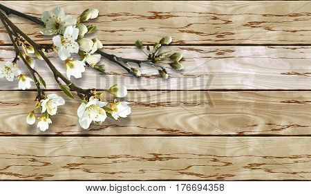 Wooden cracked grunge background with spring flowering twigs. Buds and white flowers on bare twigs. 3d rendering