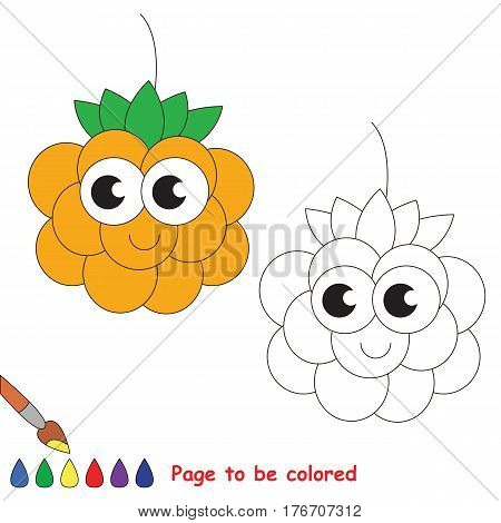 Cloudberry to be colored. Coloring book to educate kids. Learn colors. Visual educational game. Easy kid gaming and primary education. Simple level of difficulty. Coloring pages.
