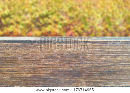 Autumn treetop background over wooden placement.Seasonal with copy space concept