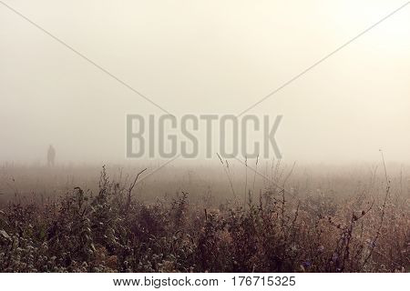 Silhouette of a man walking in a foggy landscape in the morning on the field / mysterious stranger