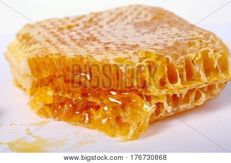 The honey comb on a white background