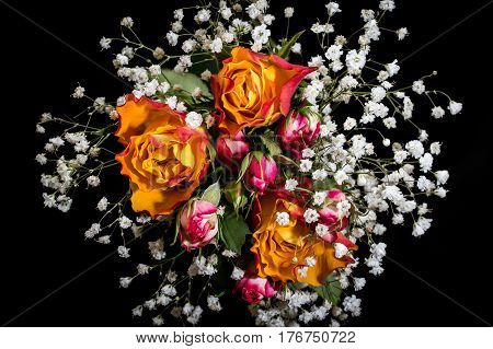 Bouquet from  bud Rose and floret Gypsophila