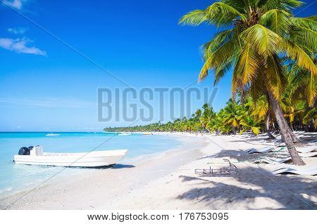 Coconut Palms And White Pleasure Boat
