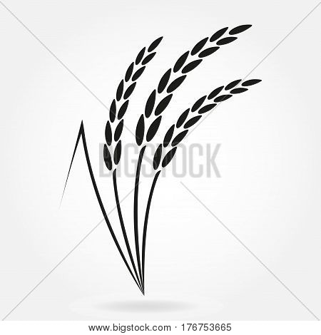 Rice. Crop symbol. Rice or Wheat ears design element. Agriculture grain. Vector illustration.