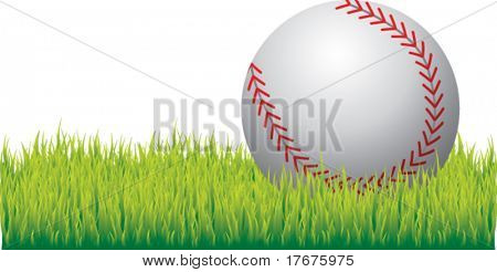 realistic baseball on grass isolated