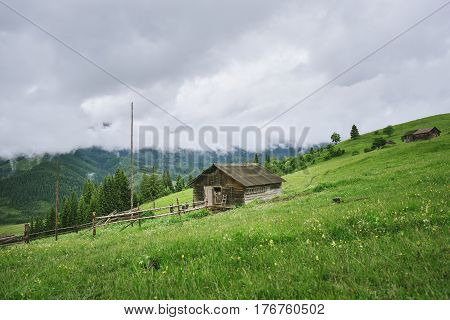 View at the village house in mountains in cloudy weather in summer. Fresh green grass and foliage
