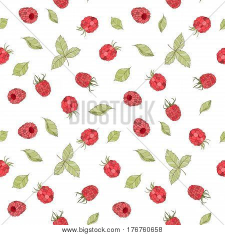 Seamless raspberry pattern can be used for wallpaper, website background, wrapping paper, invitation, flyer, banner or website. Hand drawn vector illustration of fruit background