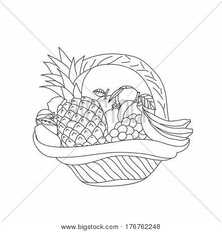 Basket with fruit, the isolated vector drawing on a white background. Sketch and scribble.