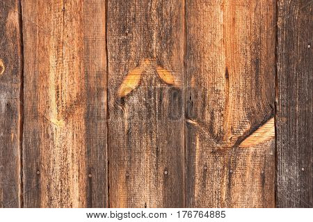 Natural Old Obsolete Wooden Wall Board Background Texture Close Up.