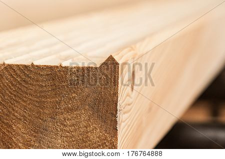 Lumber Industrial Wood Texture, Timber Butts Background