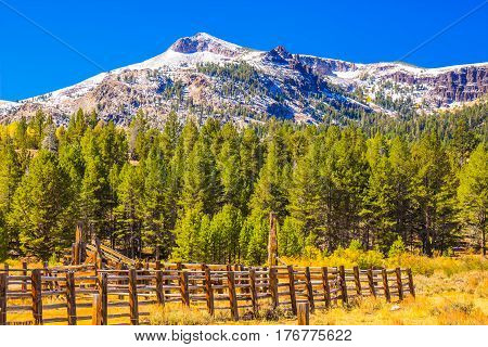 Old Cattle Corral In Meadow With Snow Dusted Mountain In Background