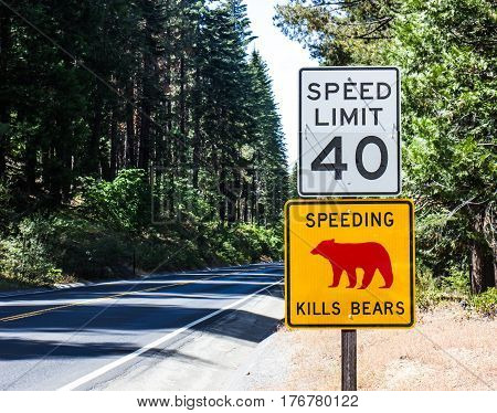 Speed Kills Bears Highway Sign In Yosemite National Park