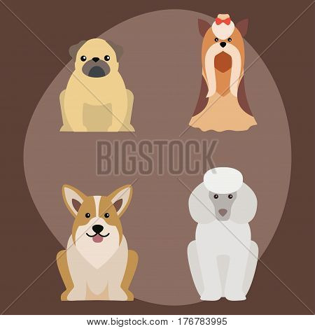 Funny cartoon dog character bread illustration in cartoon style happy puppy and isolated friendly mammal vector illustration. Domestic element flat comic adorable mascot canine.