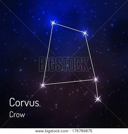 Corvus crow constellation in the night starry sky. Vector illustration
