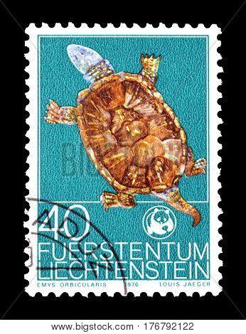LIECHTENSTEIN - CIRCA 1976 : Cancelled postage stamp printed by Liechtenstein, that shows European Pond Turtle.