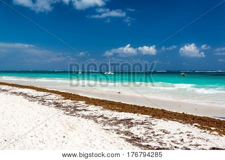 Beautiful White Sand Beach