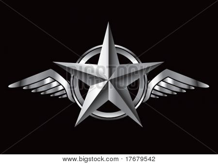 winged icon featuring silver star