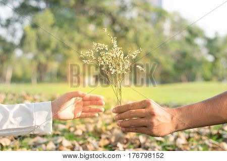 boyfriend sending bouquet flower for girlfriend and her being received flower from boyfriend in public garden autumn season