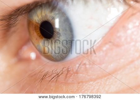 The man's eyes as a background. macro