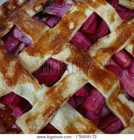 Close-up of rhubarb tart with pink rhubarb and pastry lattice on top
