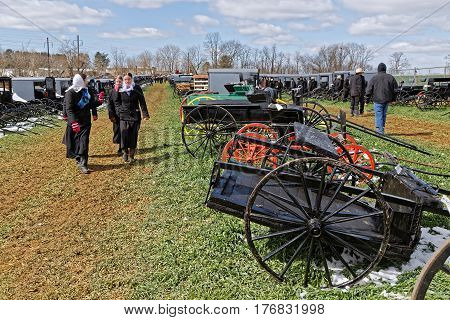 GORDONVILLE PENNSYLVANIA - March 11 2017: Amish carriages buggys and carts for sale at the annual spring auction `Amish Mud Sale` which benefits the Fire company.